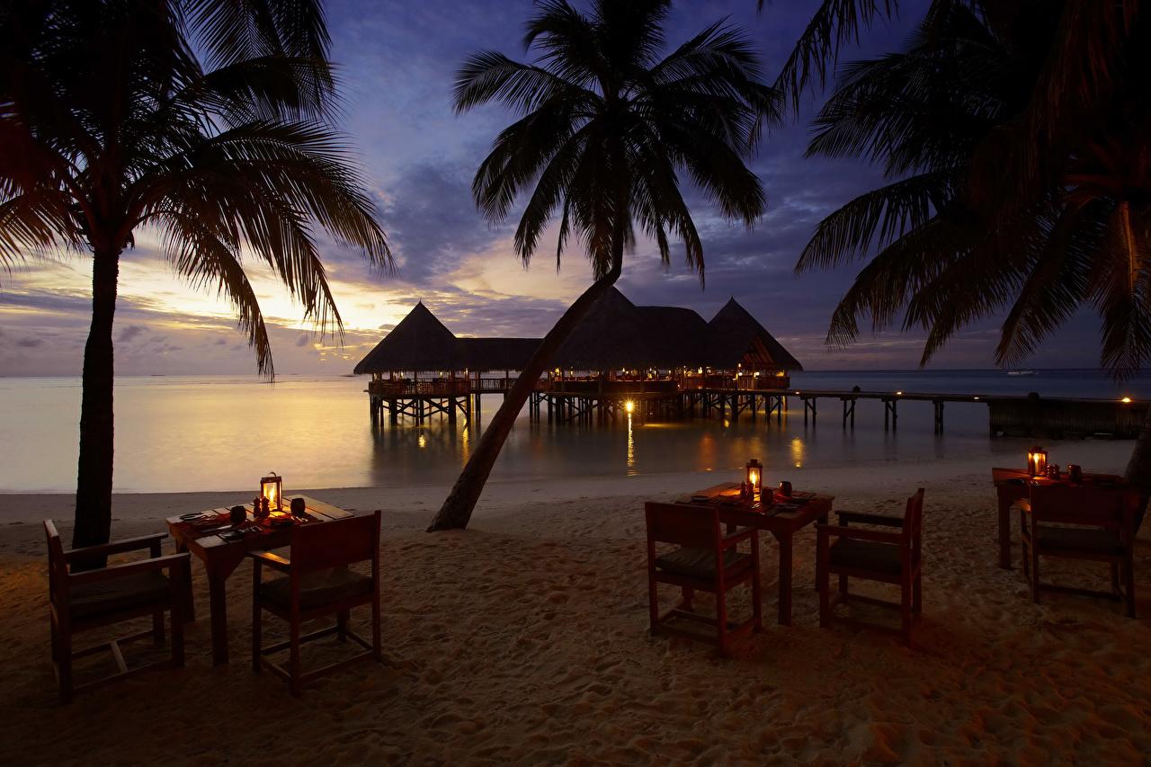 Обои Мальдивы Бунгало Gili Lankanfushi Пляж Природа Пальмы Тропики Стол Вечер берег Стулья Побережье