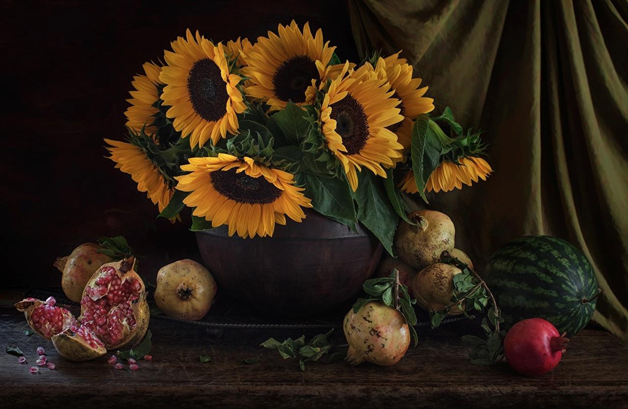 Картинка цветок Арбузы Гранат Подсолнухи Продукты питания Натюрморт Цветы Подсолнечник Еда Пища