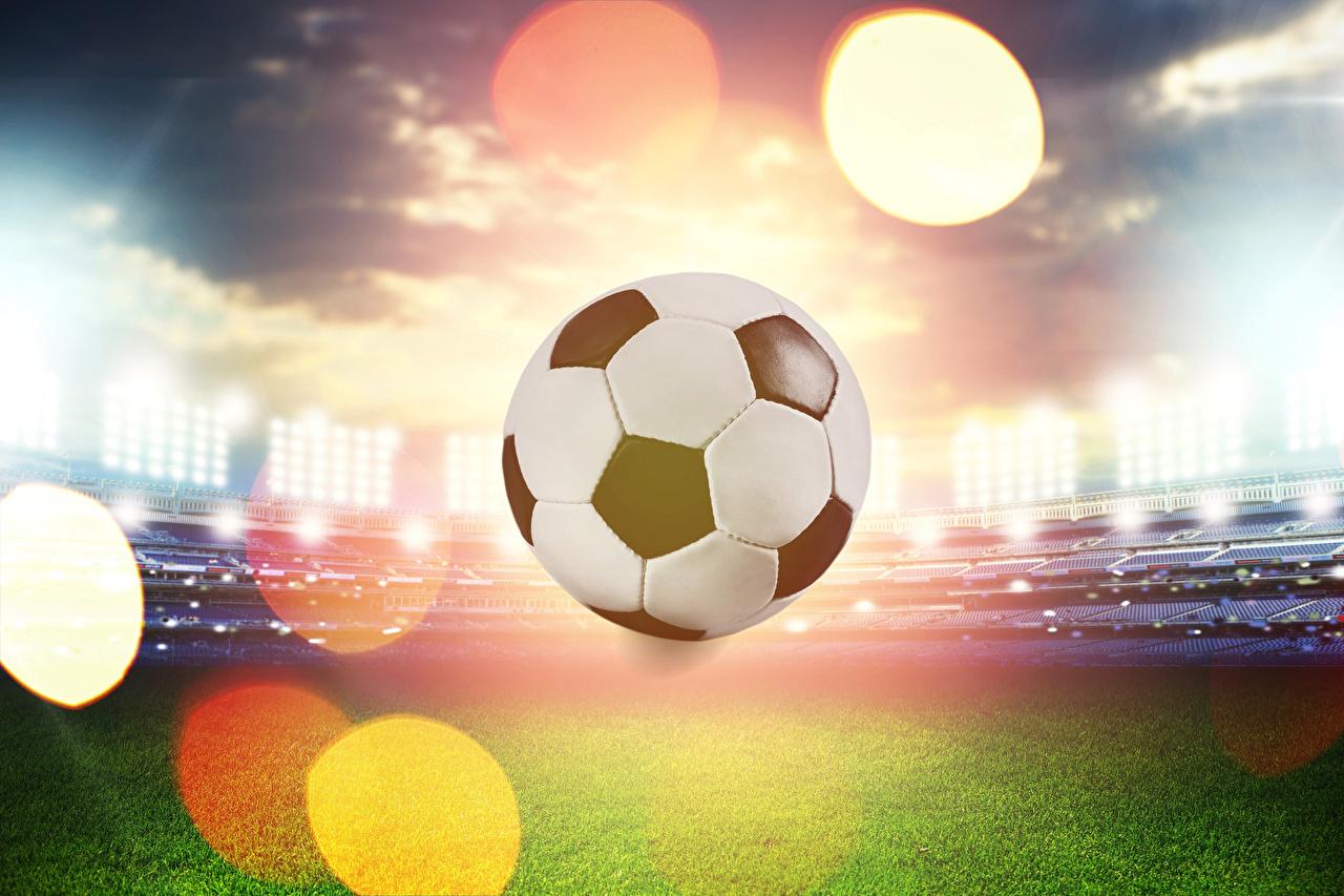 Фотография Футбол спортивная Газон Мячик Спорт спортивный спортивные Мяч газоне