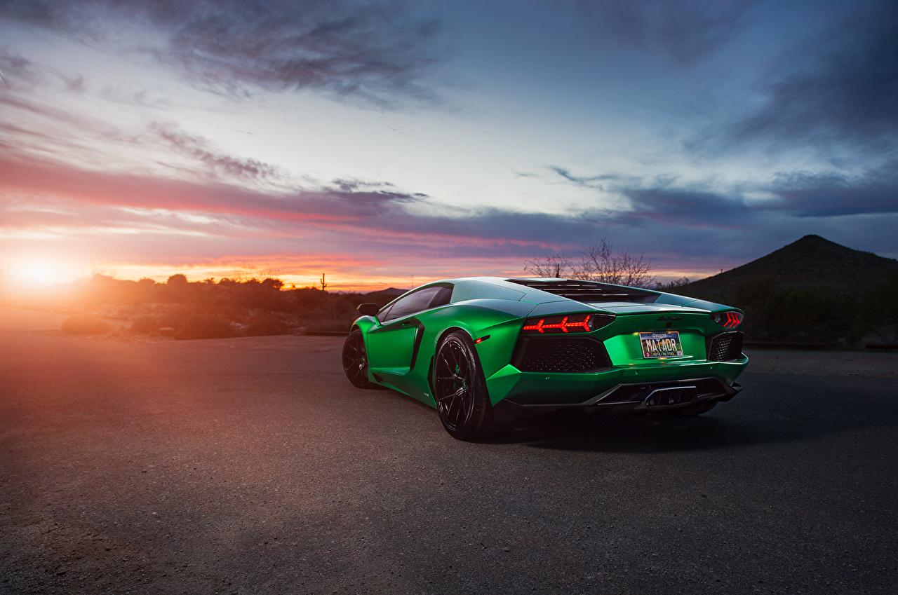 Фотография Ламборгини Aventador зеленая Сзади машина Lamborghini зеленых зеленые Зеленый авто машины вид сзади автомобиль Автомобили