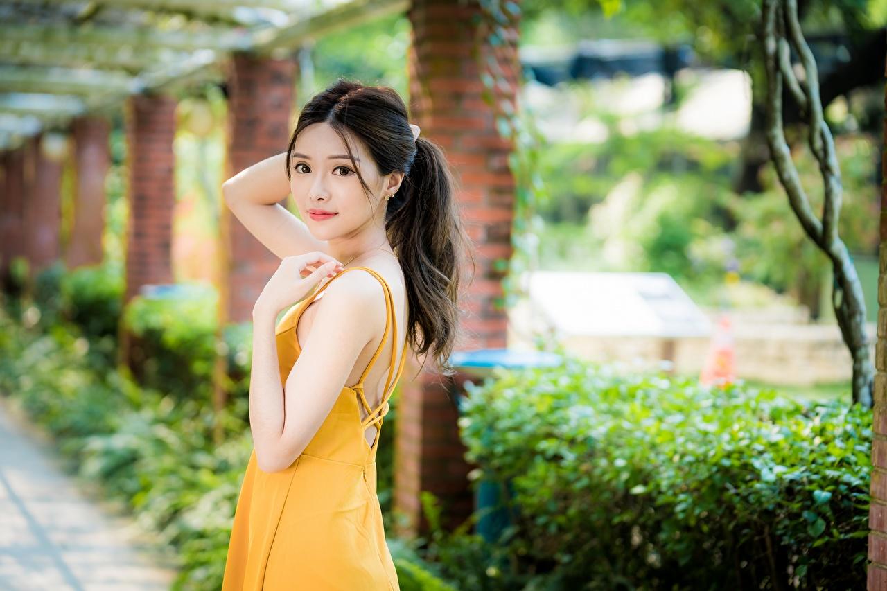 Картинка боке Милые позирует Девушки азиатка смотрит Платье Размытый фон Поза милый милая Миленькие девушка молодые женщины молодая женщина Азиаты азиатки Взгляд смотрят платья