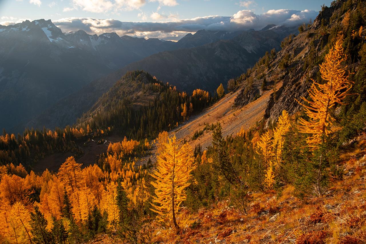 Фото штаты Carne Mountain Горы Осень Природа Деревья США осенние