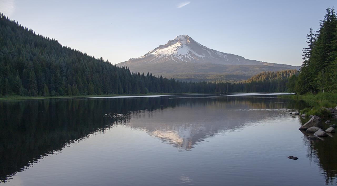 Фото США Вулкан Mount Hood, Trillium Lake, Oregon Горы Природа Леса Озеро отражается Камни штаты вулканы вулкана Отражение отражении Камень