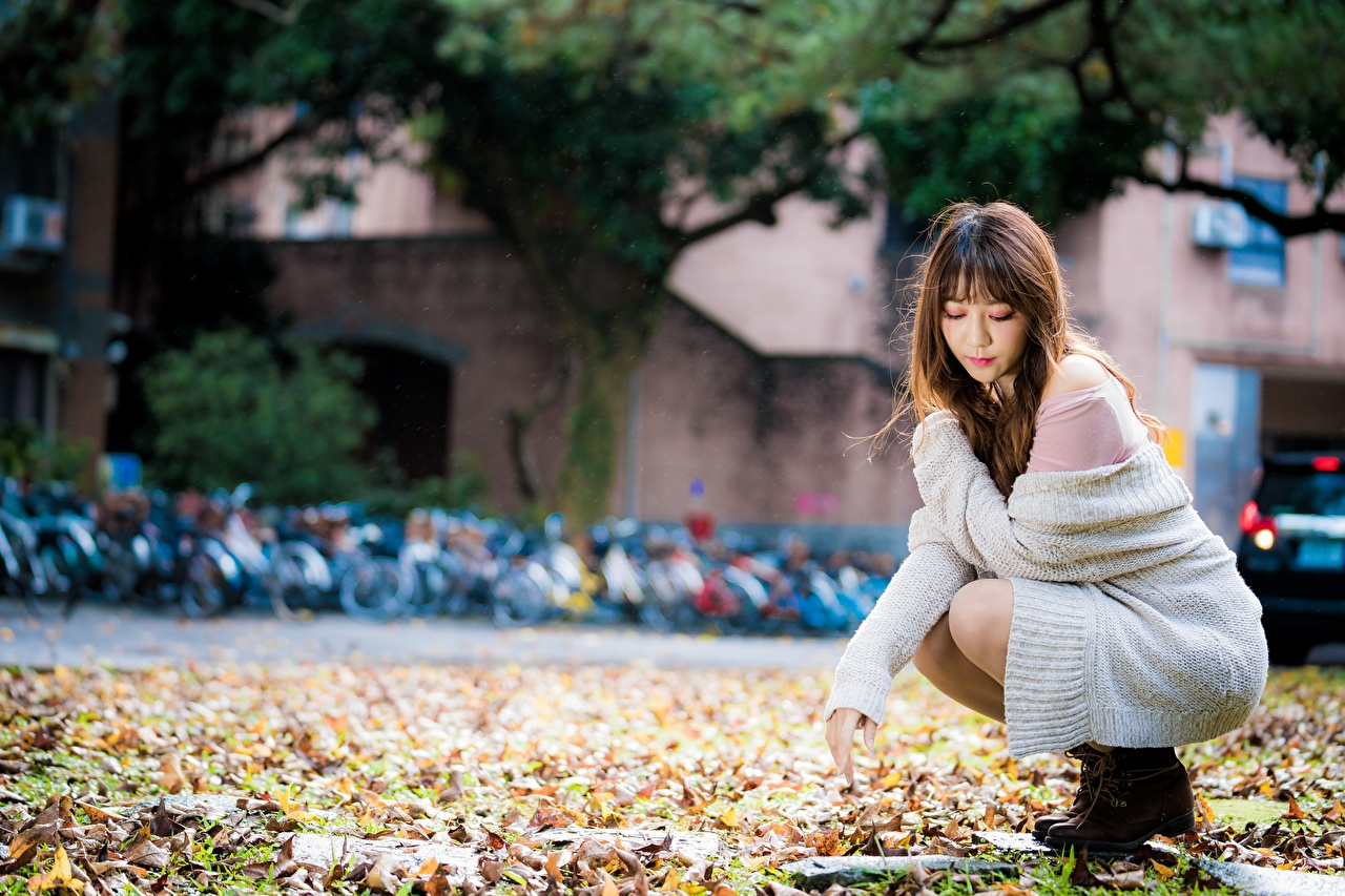 Фото лист Шатенка Размытый фон молодые женщины Азиаты Сидит Листва Листья шатенки боке девушка Девушки молодая женщина азиатка азиатки сидя сидящие