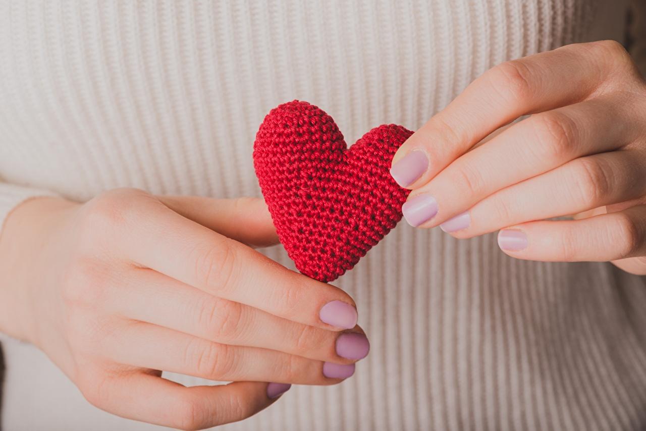 Фотографии День святого Валентина сердечко рука Крупным планом День всех влюблённых серце Сердце сердца Руки вблизи