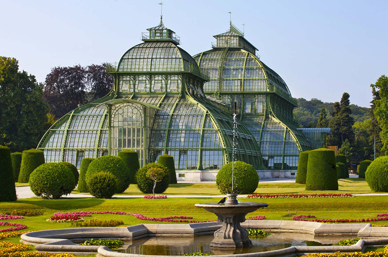 Картинки Вена Австрия Фонтаны Schoenbrunn Palm House Природа Парки Газон Дома Кусты Города Здания