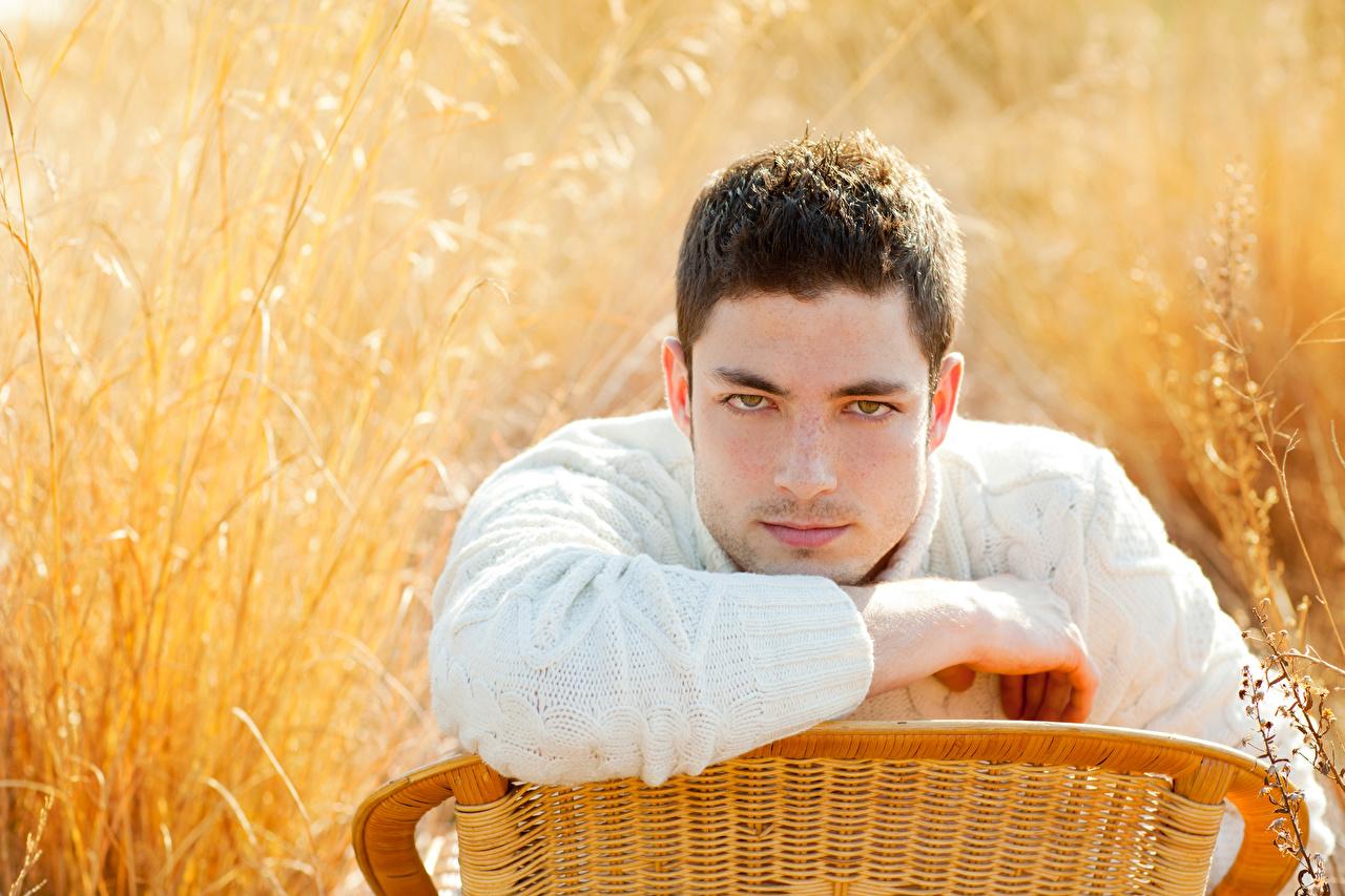 Картинки Мужчины Размытый фон свитере Взгляд мужчина боке Свитер свитера смотрят смотрит