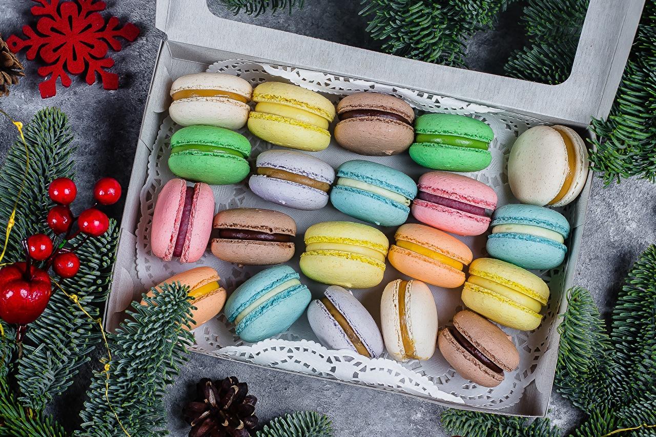 Фотография Макарон Разноцветные Печенье Продукты питания Еда Пища