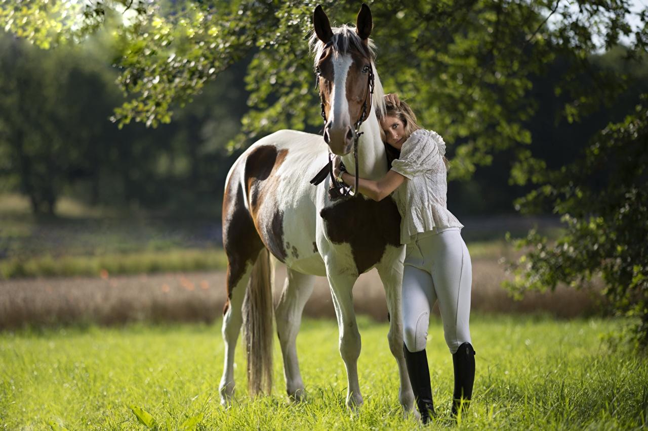 Картинка Лошади colt male Объятие Девушки униформе животное лошадь девушка обнимает обнимаются молодая женщина молодые женщины Униформа Животные
