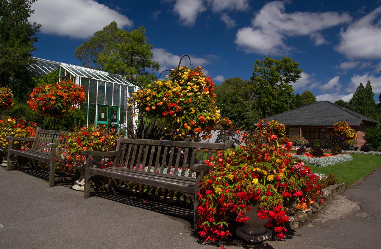 Картинки Уэльс Великобритания Swansea Botanic Gardens Природа Парки Скамейка Дизайн Скамья дизайна