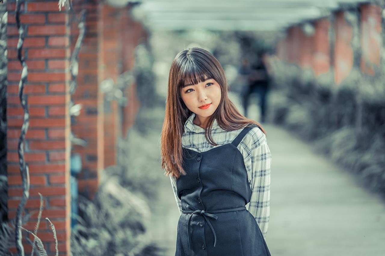 Фотография шатенки Размытый фон Девушки азиатки смотрят Шатенка боке девушка молодые женщины молодая женщина Азиаты азиатка Взгляд смотрит