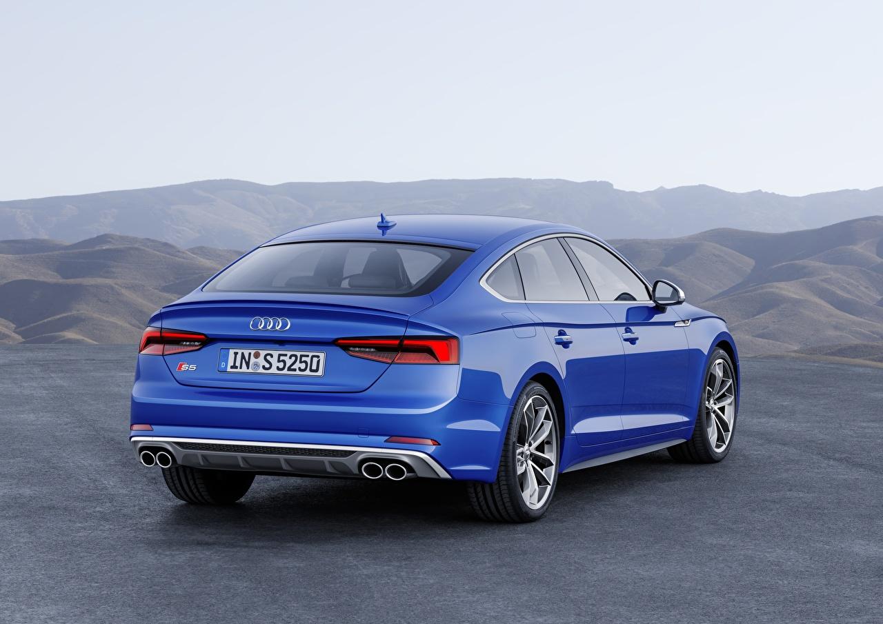 Картинки Audi 2018 A5 S5 синие вид сзади Автомобили Ауди синяя Синий синих авто Сзади машины машина автомобиль
