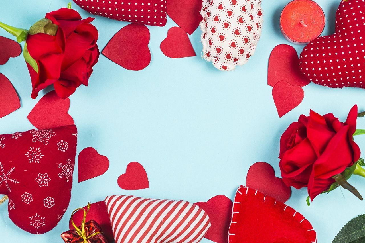 Фотографии День святого Валентина Сердце Цветы Шаблон поздравительной открытки День всех влюблённых серце сердца сердечко цветок