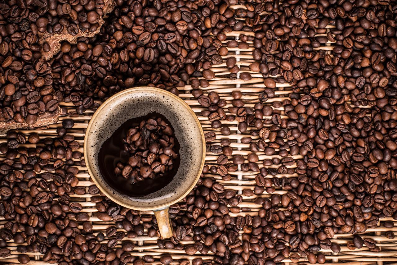 Фото Кофе Зерна Еда Чашка зерно Пища чашке Продукты питания