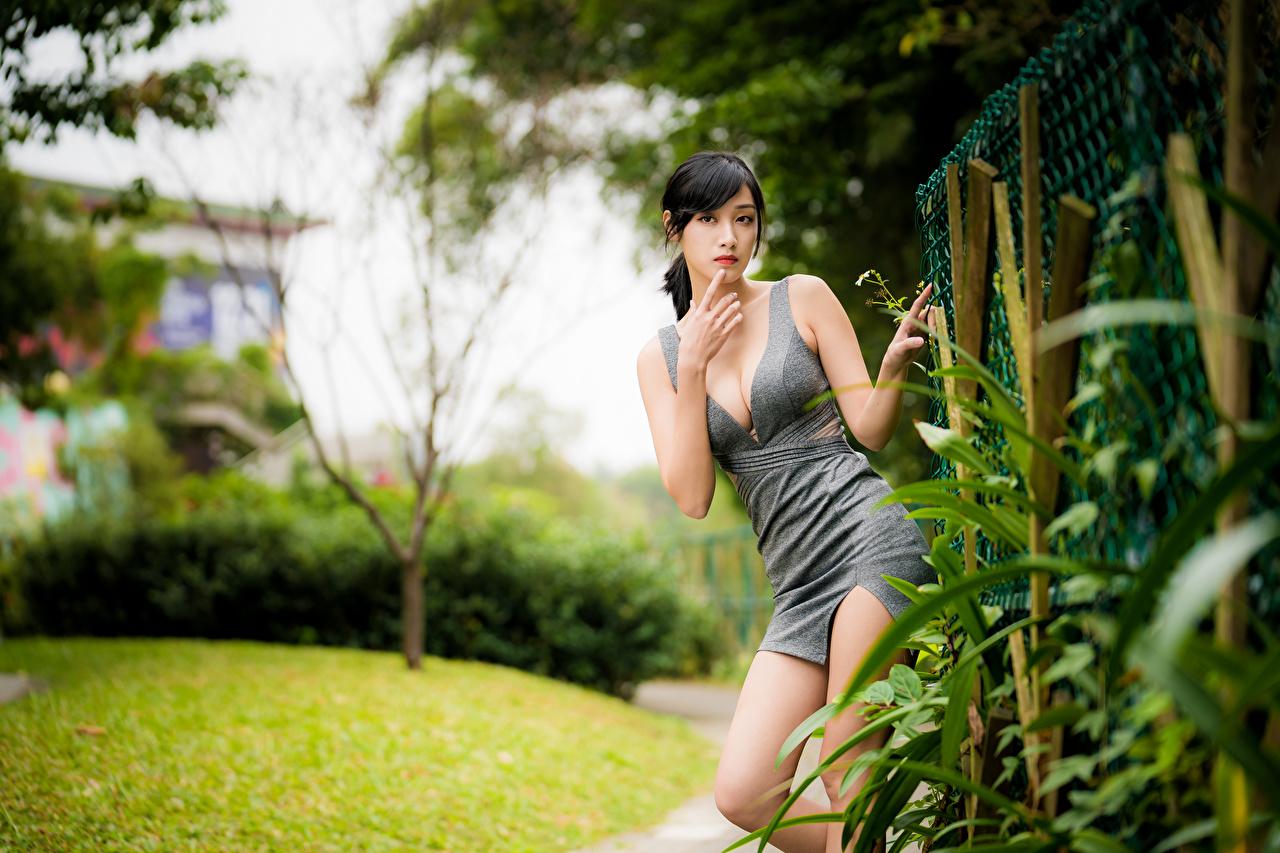 Фотографии боке Поза вырез на платье Девушки азиатки рука Взгляд платья Размытый фон позирует Декольте девушка молодая женщина молодые женщины Азиаты азиатка Руки смотрит смотрят Платье