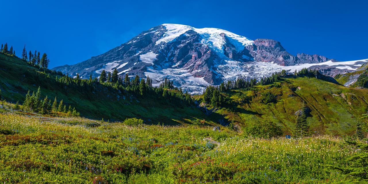 Картинка США Панорама Mount Rainier National Park Горы Природа Луга Парки Пейзаж штаты америка панорамная гора парк