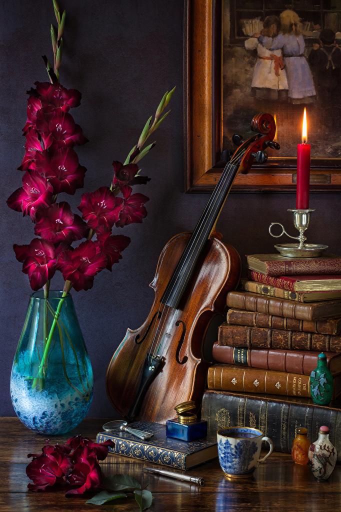 Картинка Скрипки Цветы Гладиолусы Ваза Чашка Книга Свечи Натюрморт  для мобильного телефона скрипка цветок гладиолус вазе вазы чашке книги