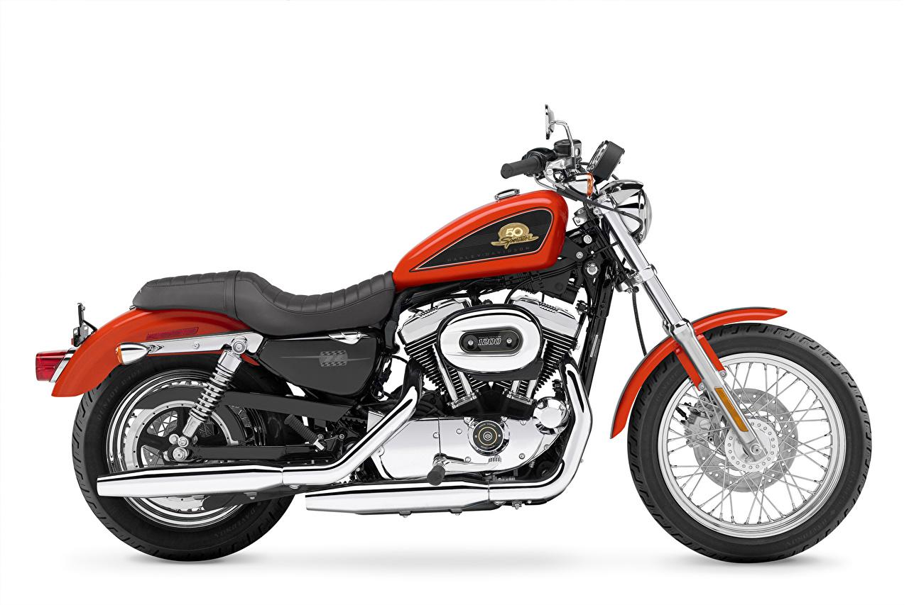 Обои Harley-Davidson 2007 XL50 Sportster 50th Anniversary Мотоциклы Белый фон Xарлей дэвидсон
