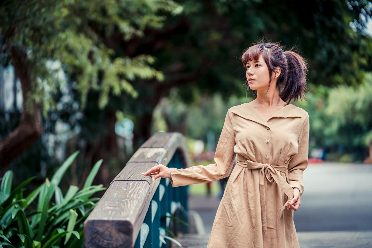 Фото Размытый фон Поза Девушки Азиаты плаще боке позирует девушка молодая женщина молодые женщины азиатки азиатка Плащ плащом