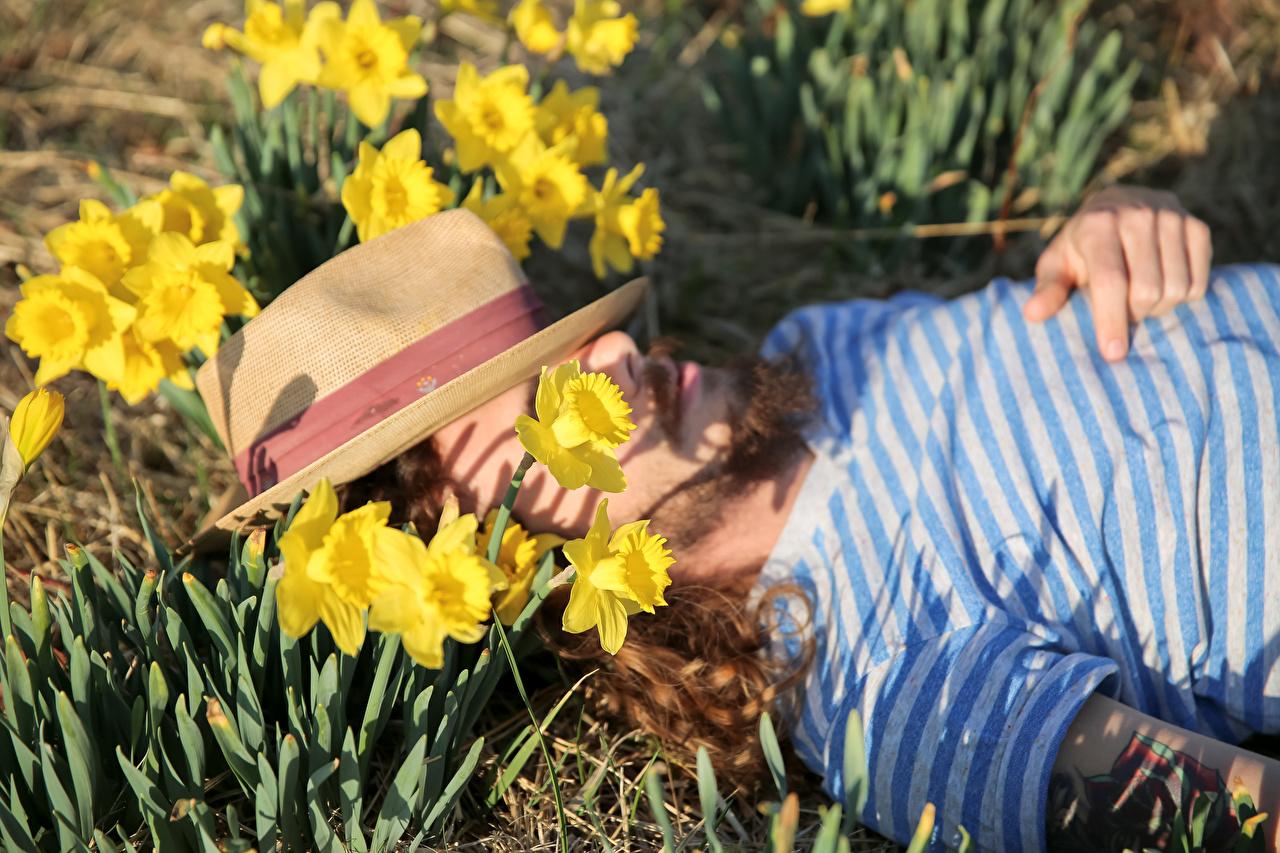 Фотография мужчина Лежит спят шляпы цветок Нарциссы Мужчины лежа лежат лежачие сон Спит Шляпа шляпе спящий Цветы