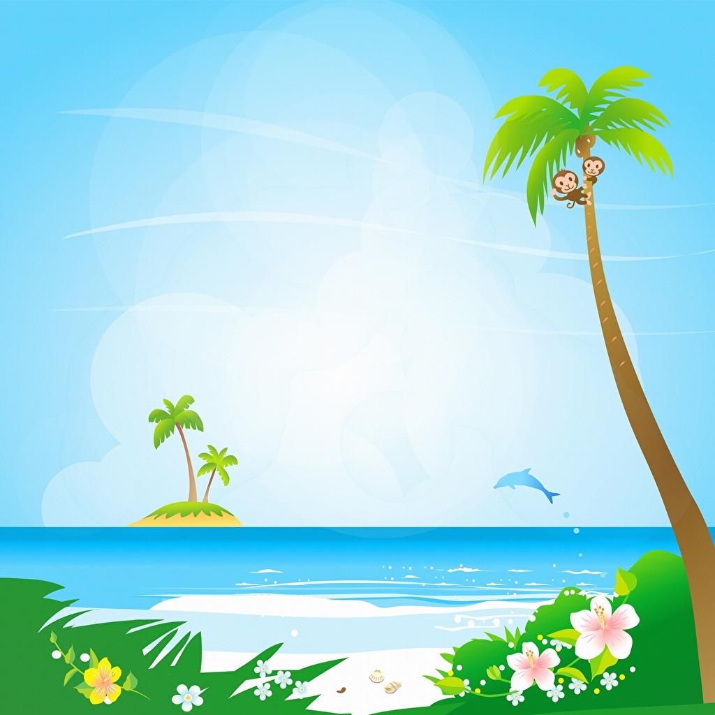 Фотография Море Солнце Природа Пальмы Векторная графика солнца пальм пальма
