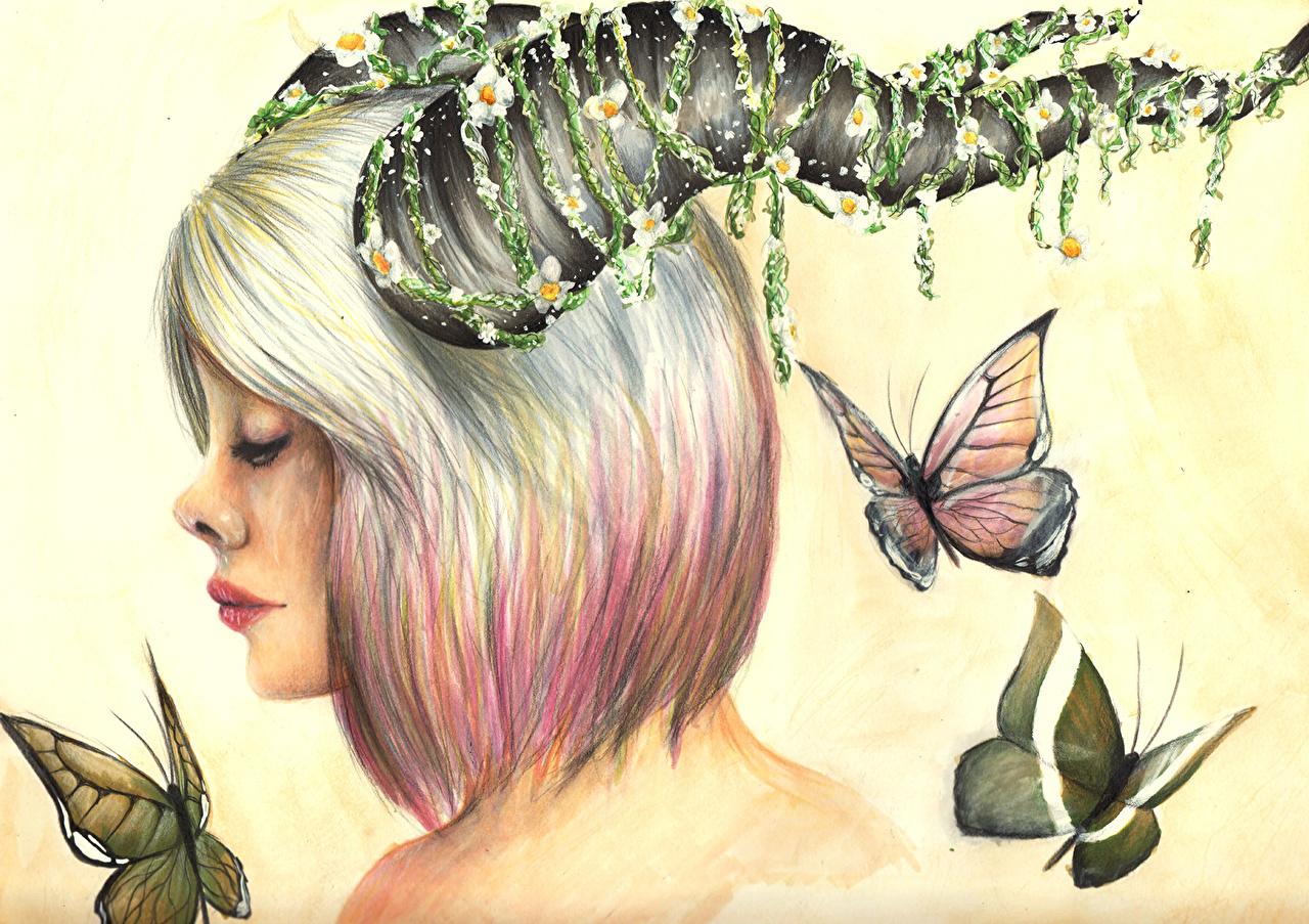 Картинки Бабочки Насекомые Рога Фантастика молодые женщины Рисованные бабочка насекомое с рогами Фэнтези девушка Девушки молодая женщина