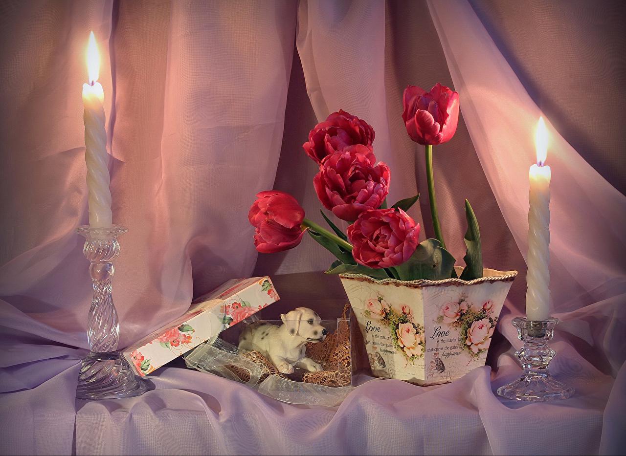 Фотография Красный Тюльпаны Цветочный горшок цветок Ваза Свечи Натюрморт красных красные красная тюльпан Цветы вазы вазе