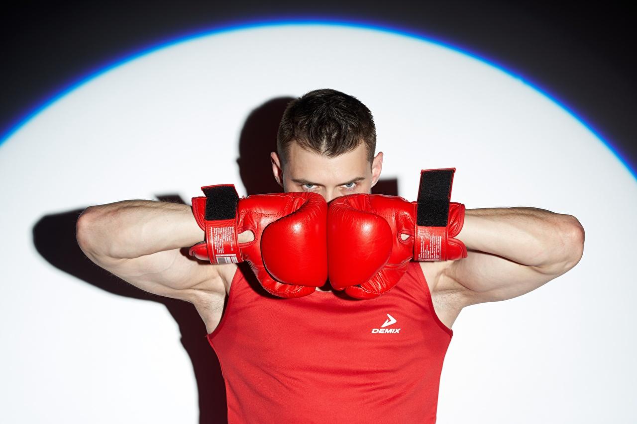 Фотографии боксера Мужчины Перчатки спортивные Бокс Руки смотрит Боксер мужчина перчатках Спорт спортивная спортивный рука Взгляд смотрят