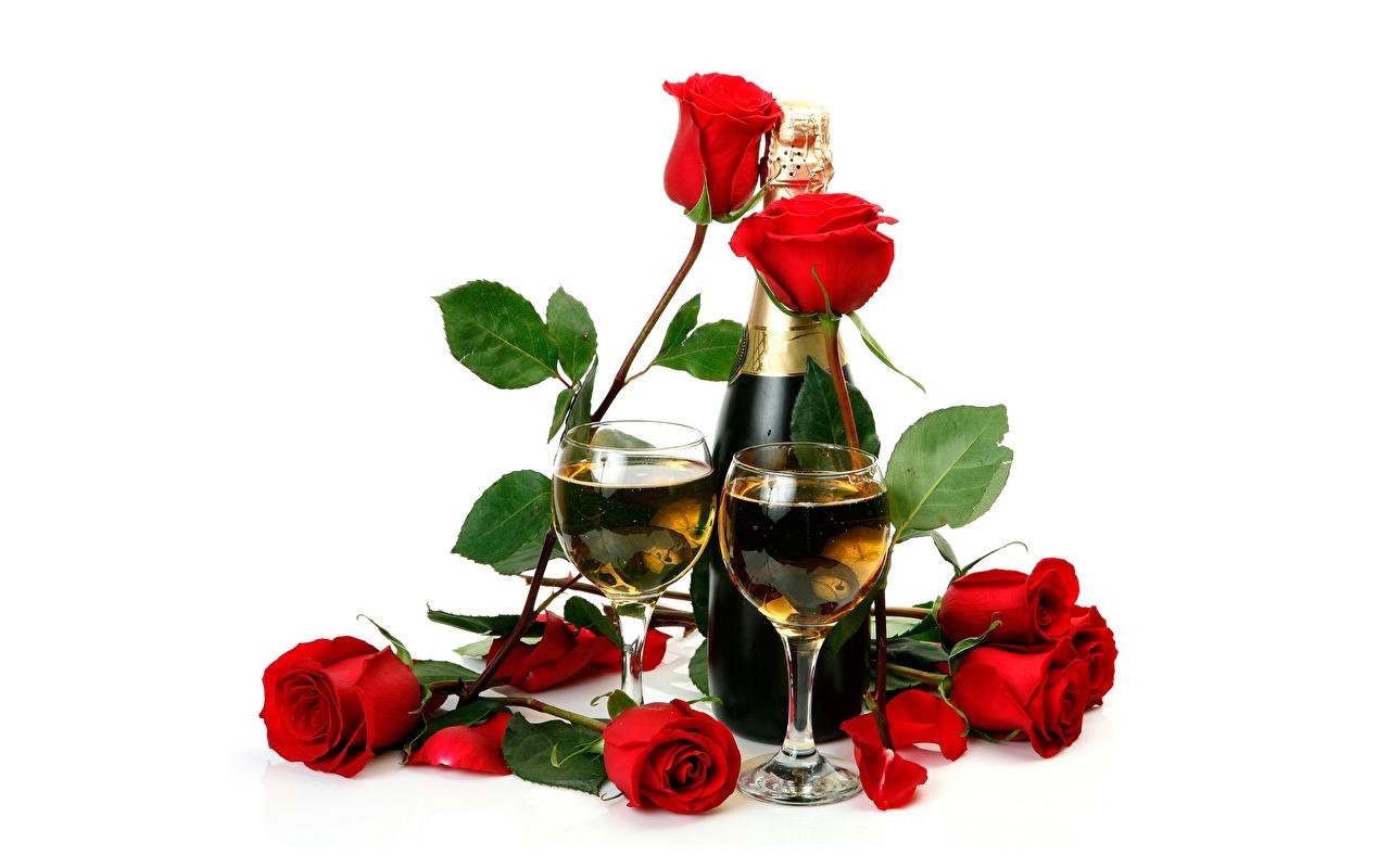 Картинки Розы Игристое вино Цветы Еда Бокалы Бутылка белым фоном роза Шампанское цветок Пища бокал бутылки Продукты питания Белый фон белом фоне