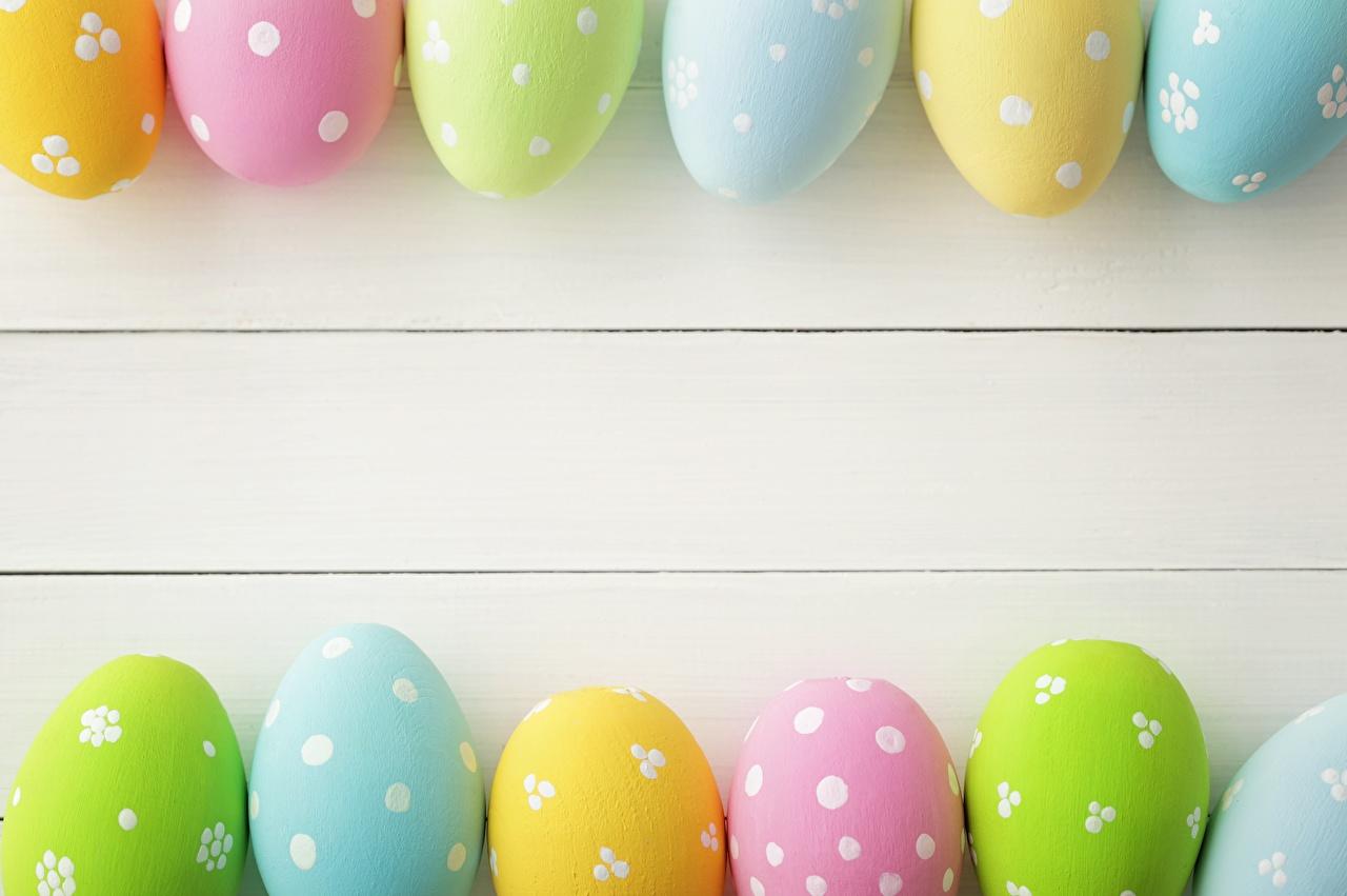 Фото Пасха яиц Шаблон поздравительной открытки яйцо Яйца яйцами