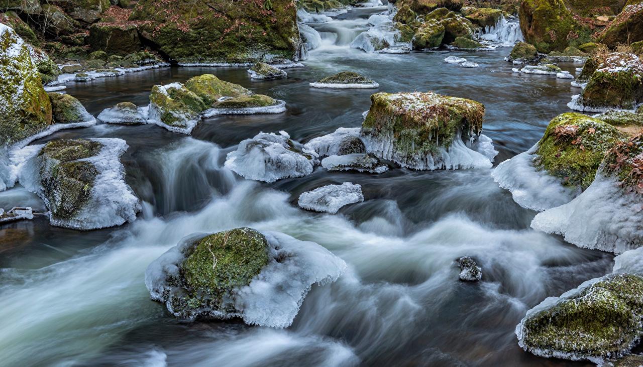 Фотография Германия South-Eifel Лед Природа мха река Камни льда Мох Реки мхом речка Камень