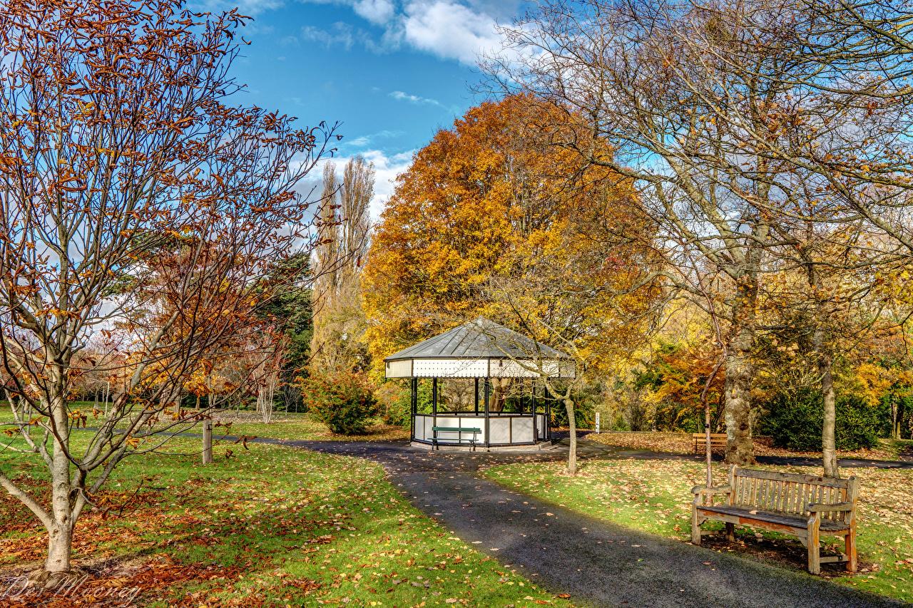 Картинка Природа Скамья Ирландия Botanic Gardens Листья осенние Сады дерева Дублин Скамейка лист Осень Листва дерево Деревья деревьев