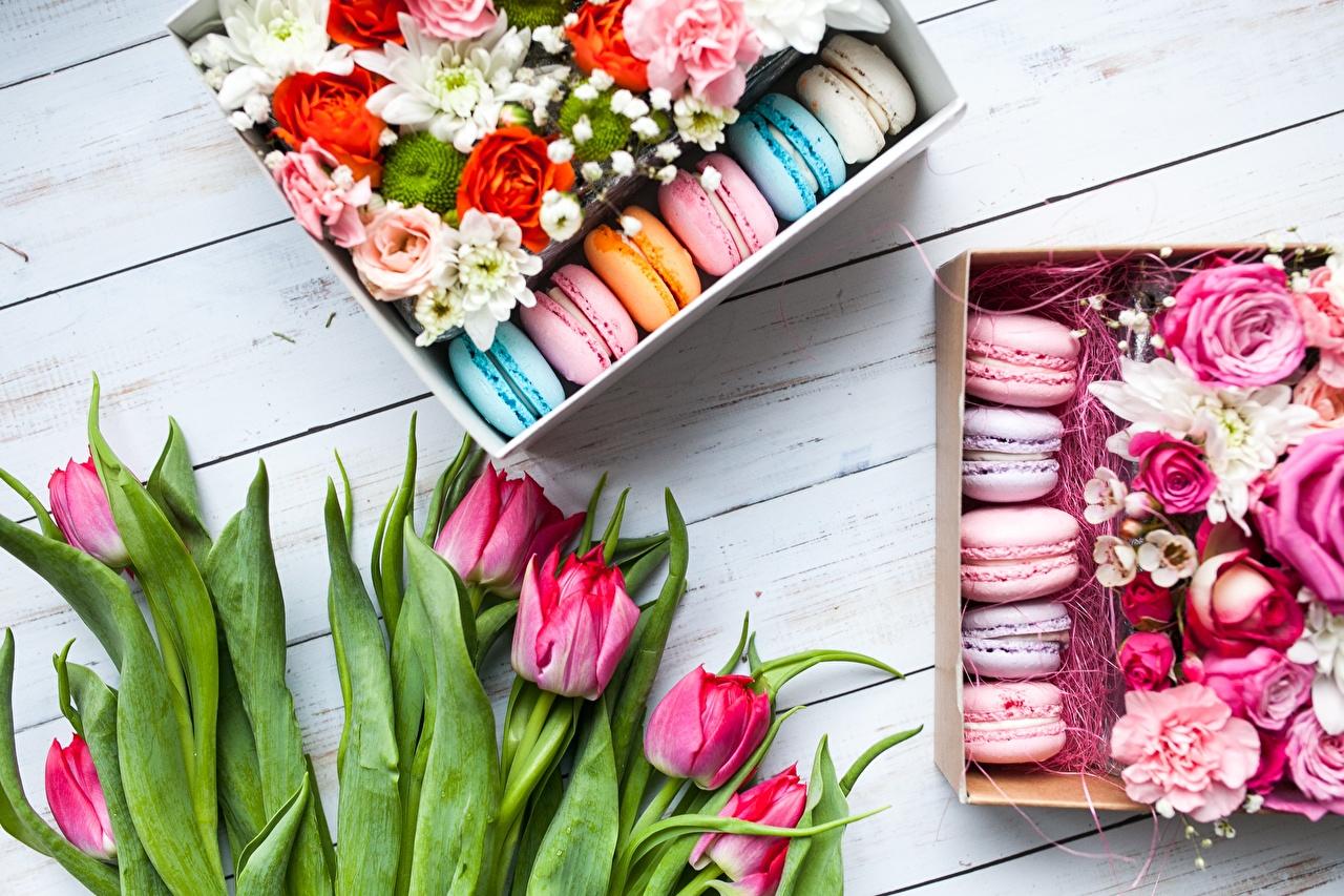 Фото Макарон тюльпан цветок Еда Тюльпаны Цветы Пища Продукты питания