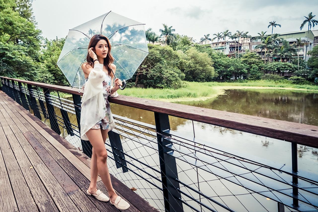 Фото Шатенка позирует мост молодые женщины азиатки зонтом Взгляд шатенки Поза Мосты девушка Девушки молодая женщина Азиаты азиатка Зонт зонтик смотрит смотрят