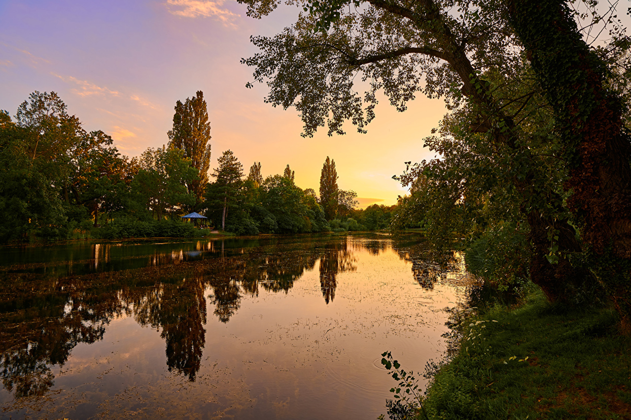 Картинка Вена Австрия Wasserpark Floridsdorf Природа Парки рассвет и закат река дерево парк Рассветы и закаты Реки речка дерева Деревья деревьев