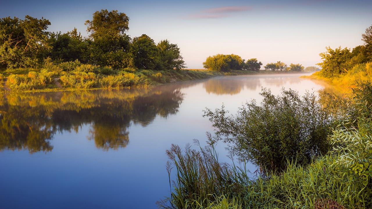 Картинка Туман Природа Утро Рассветы и закаты речка Трава Кусты тумане тумана рассвет и закат Реки река траве кустов