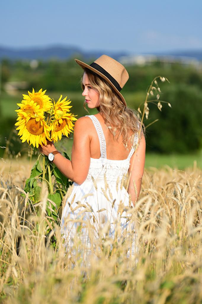 Обои для рабочего стола Блондинка Selina Букеты шляпы Природа Девушки Поля Подсолнечник Платье  для мобильного телефона блондинок блондинки букет шляпе Шляпа девушка молодые женщины молодая женщина Подсолнухи платья
