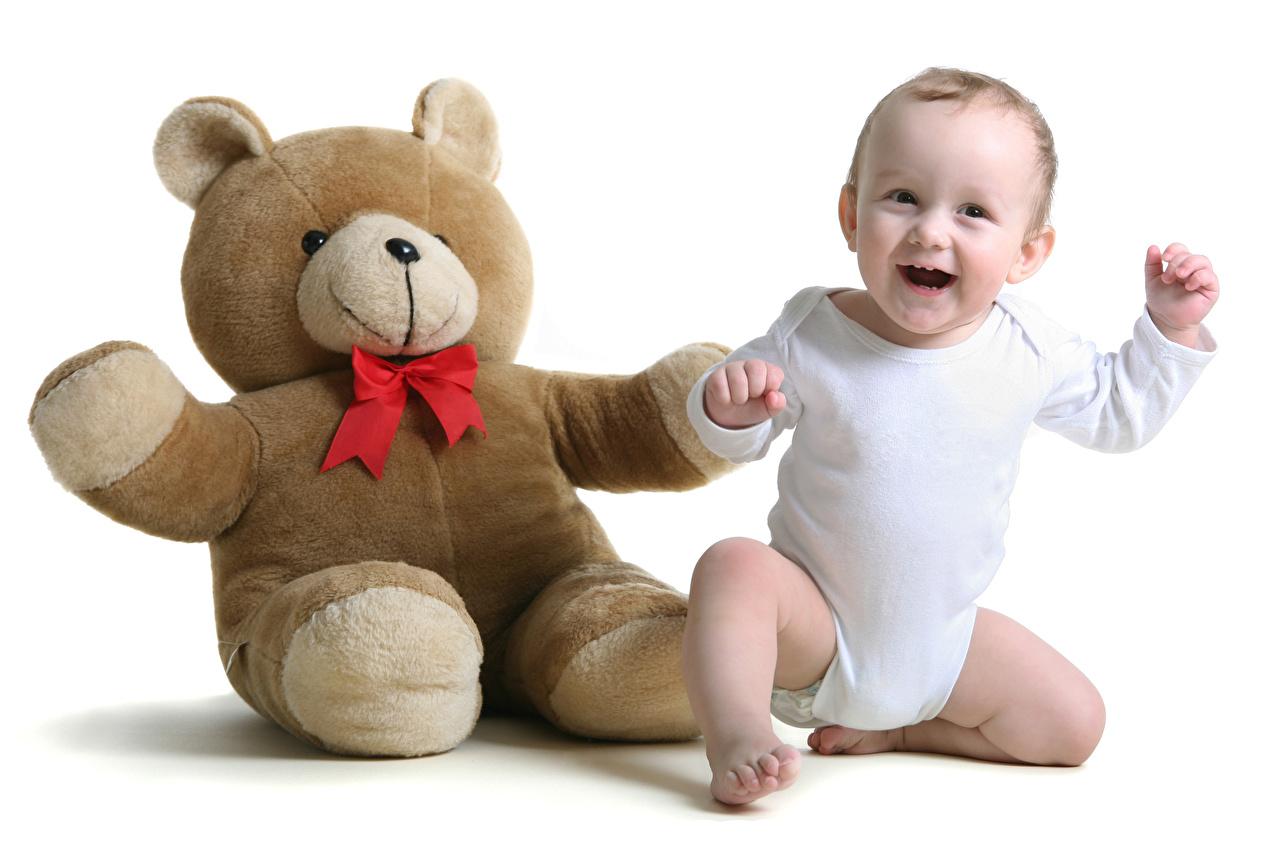 Фотография младенец радостная Дети Плюшевый мишка белым фоном младенца Младенцы грудной ребёнок Радость счастье радостный счастливые счастливая счастливый ребёнок Мишки Белый фон белом фоне