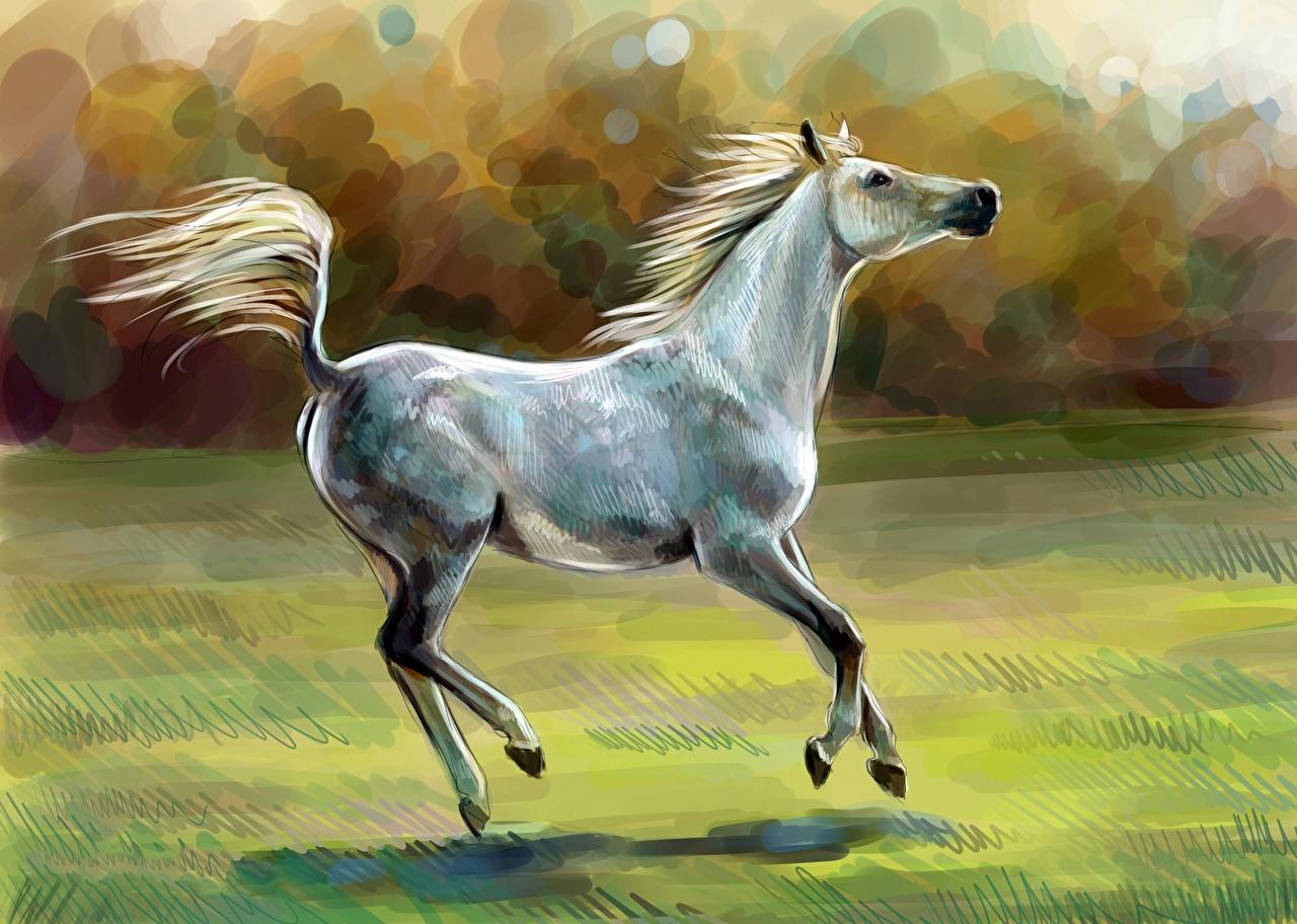 Картинка Лошади Животные Рисованные