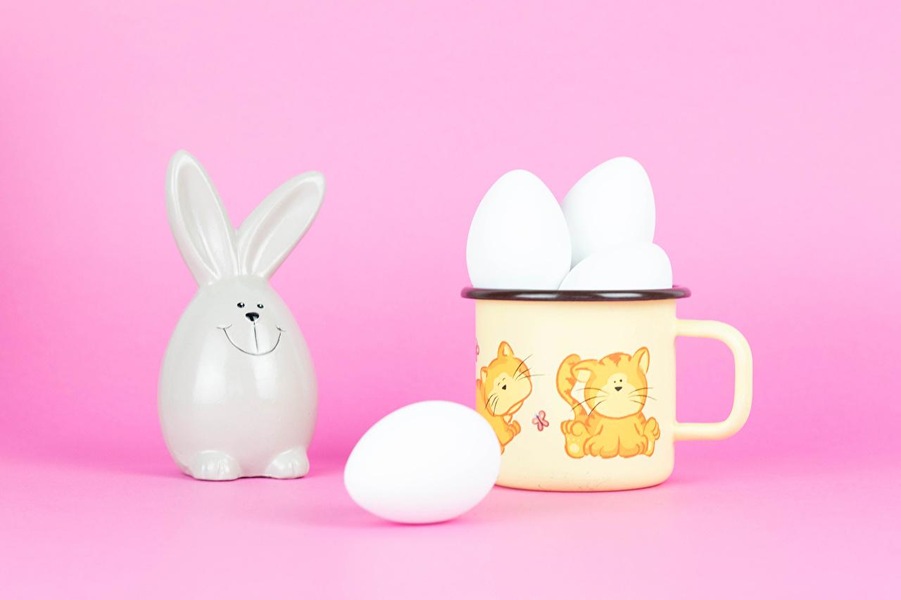 Фотографии Пасха кролик Розовый фон Яйца кружки Кролики яиц яйцо яйцами Кружка кружке