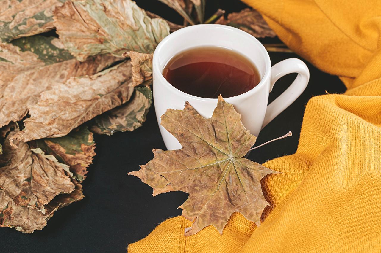 Фото Листва клёна Чай Осень кружки Продукты питания лист Листья Клён клёновый осенние Еда Пища Кружка кружке