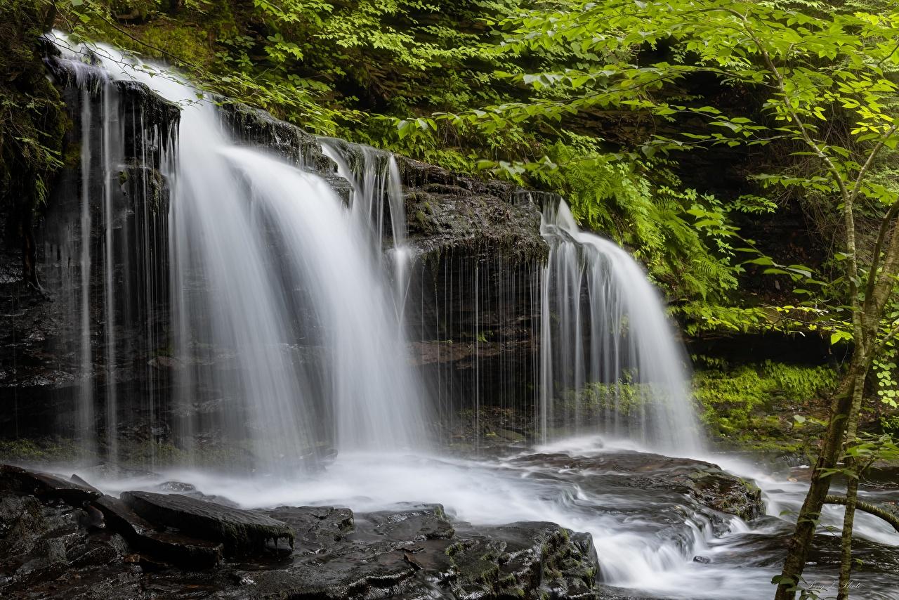 Фото штаты Ricketts Glen State Park Утес Природа Водопады Парки США америка Скала скале скалы парк