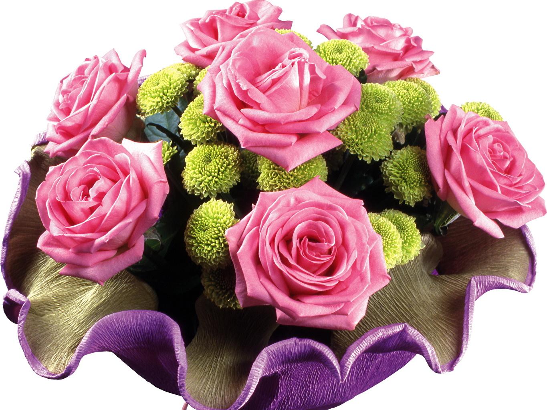 Флора Студия  цветы букеты заказ букетов доставка цветов