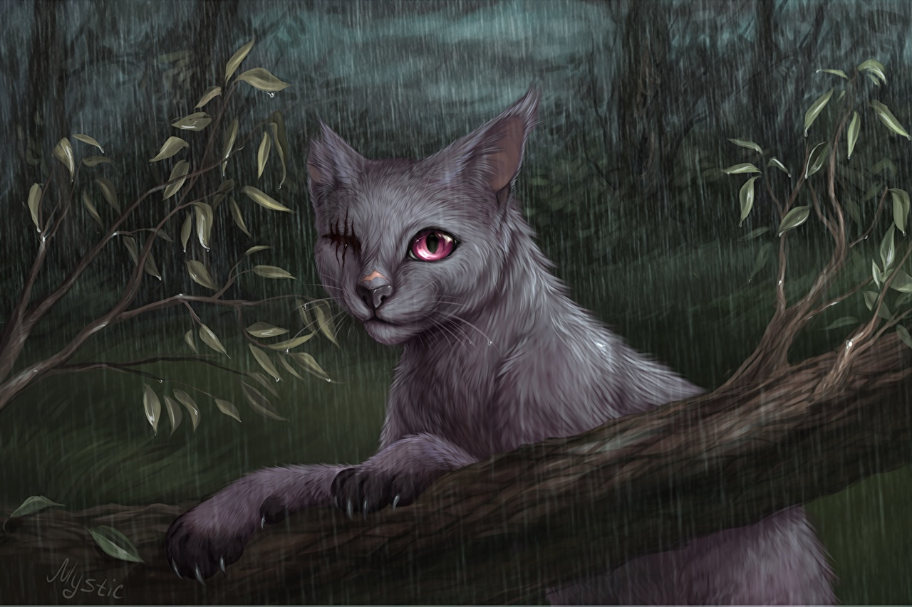 Картинка кошка Дождь на ветке Животные Рисованные кот коты Кошки ветвь ветка Ветки животное