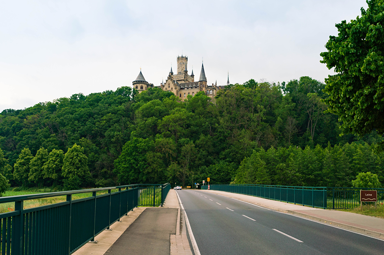 Картинка Германия Marienburg castle road in Pattensen замок Природа лес Забор Дороги Замки Леса забора ограда забором