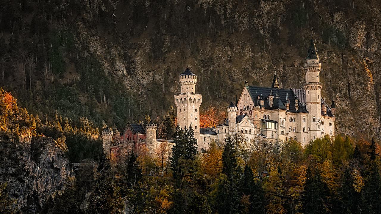 Картинки Бавария Нойшванштайн Германия Утес Замки Леса Города скалы скале Скала город