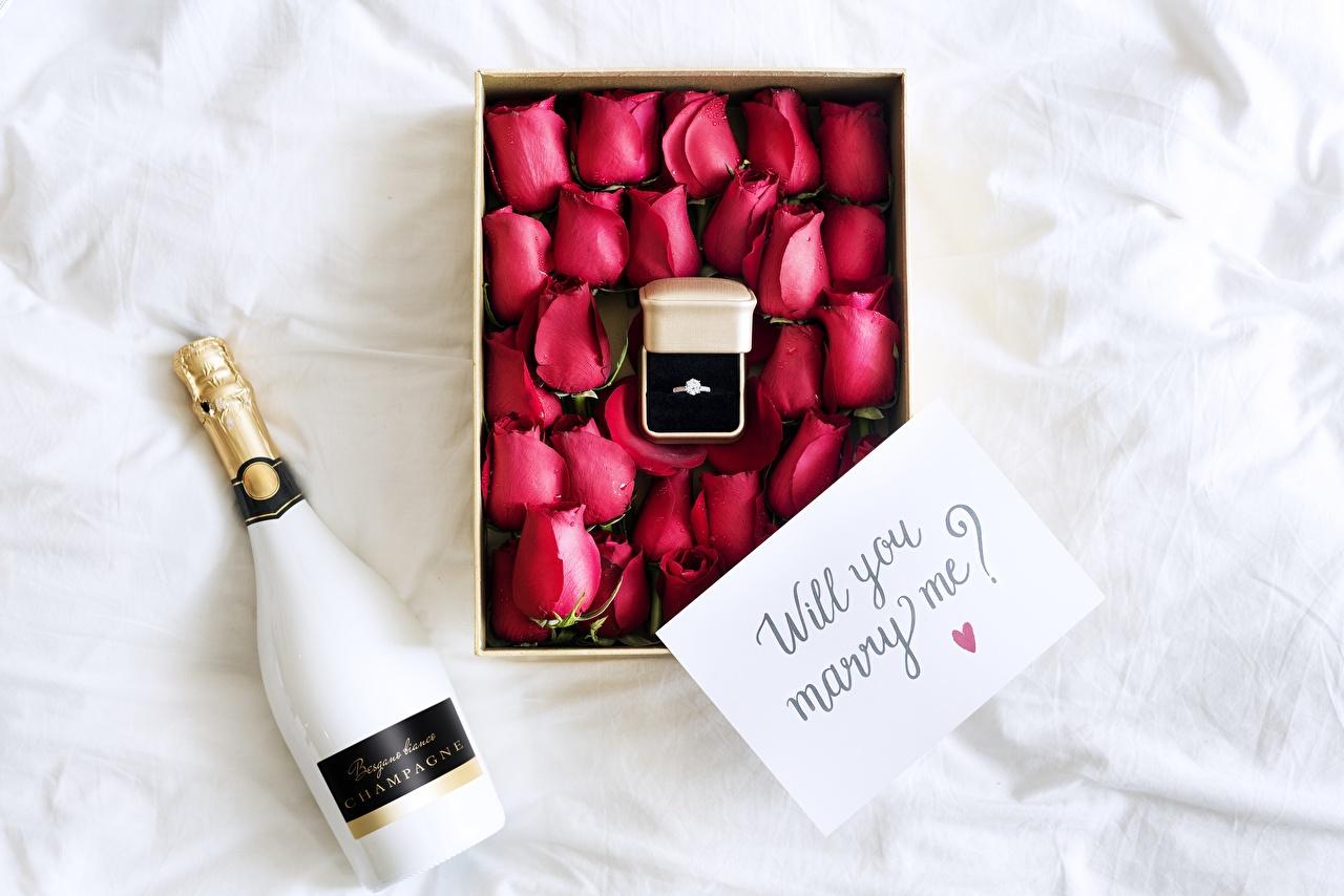 Обои Английский will you marry me? Розы Игристое вино Цветы Кольцо Коробка Бутылка Шампанское