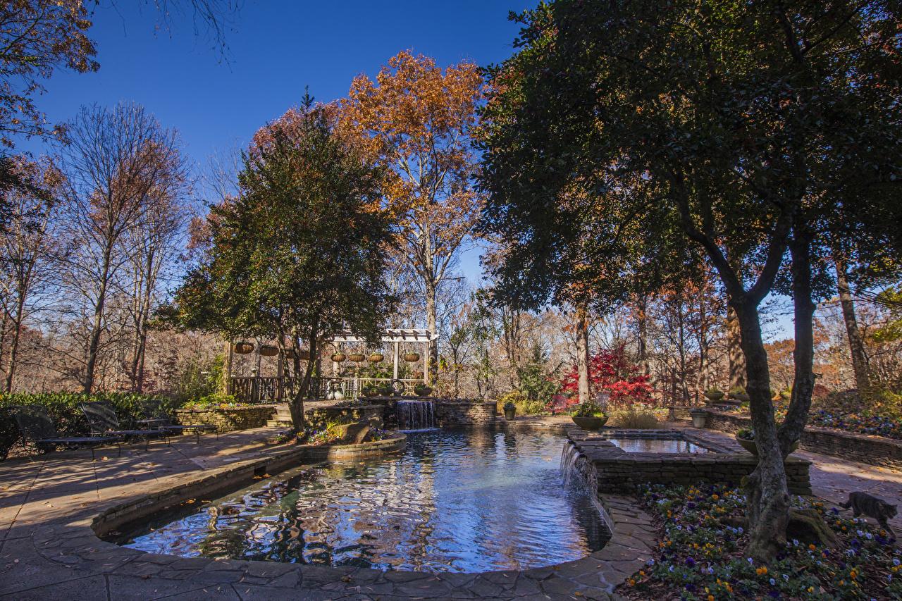 Фотографии штаты Gibbs Gardens осенние Природа Водопады Пруд Парки Деревья США Осень