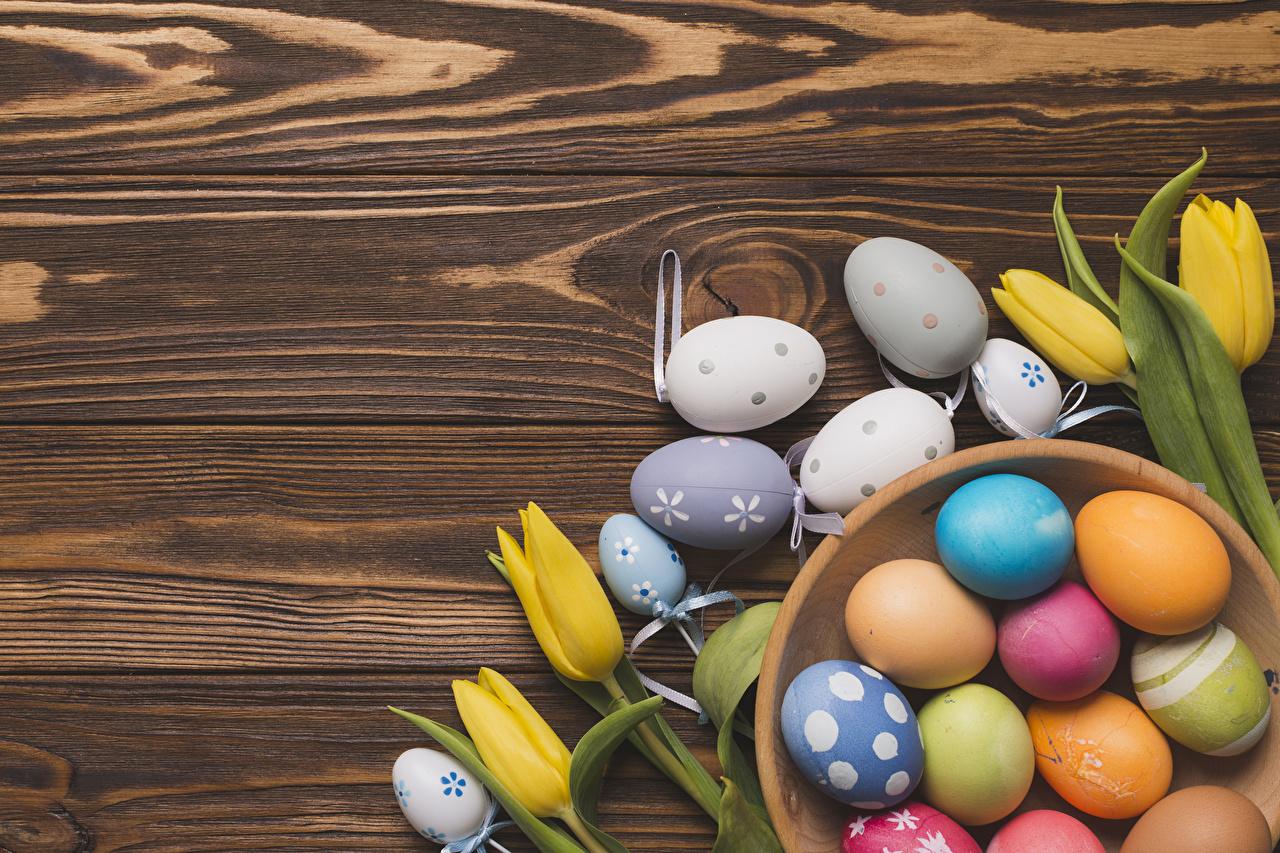 Фотографии Пасха Разноцветные яиц тюльпан Цветы Доски яйцо Яйца яйцами Тюльпаны цветок