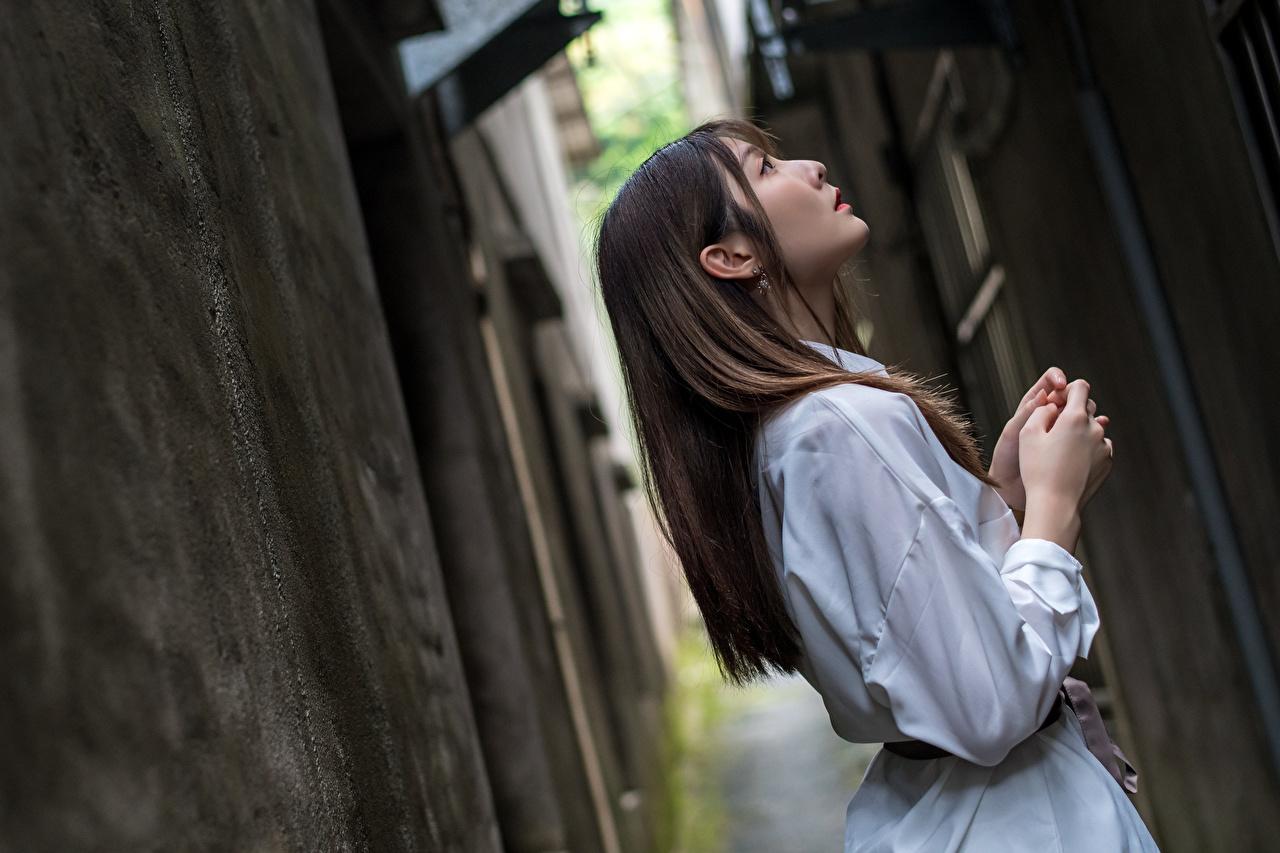 Фотография Поза Девушки азиатка Руки Платье позирует девушка молодая женщина молодые женщины Азиаты азиатки рука платья